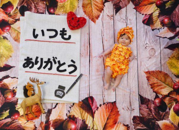 【浜松発】おひるねアート撮影会